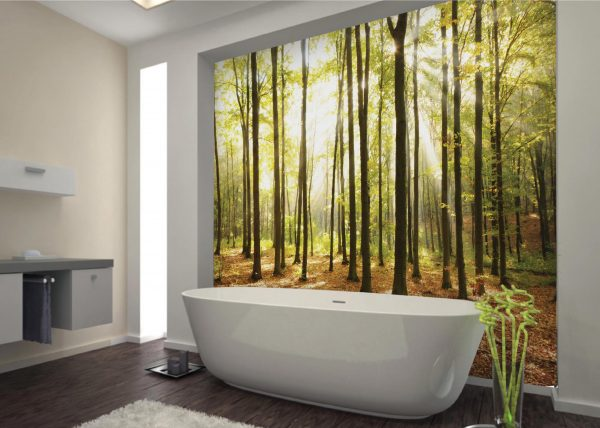 Forest 6 Wall Graphic