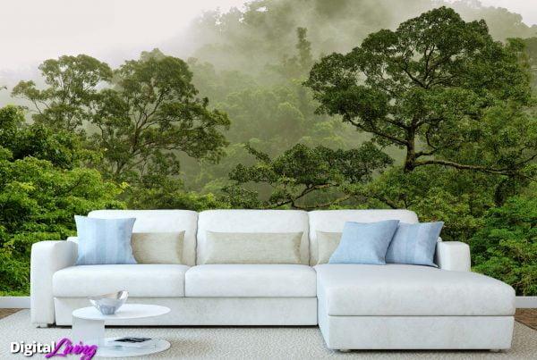 Rainforest 5